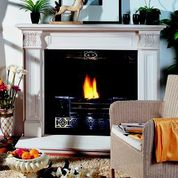 fireplaces dublin acanthus leaf2